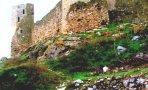cetatea-medievala-enisala-heracleea3