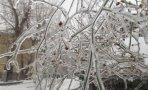 iarna-din-anotimpurile-vivaldi-04