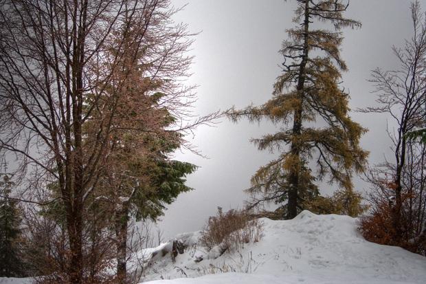 sinaia cota 1400 iarna ploaie