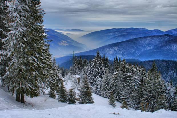 iarna sinaia zapada