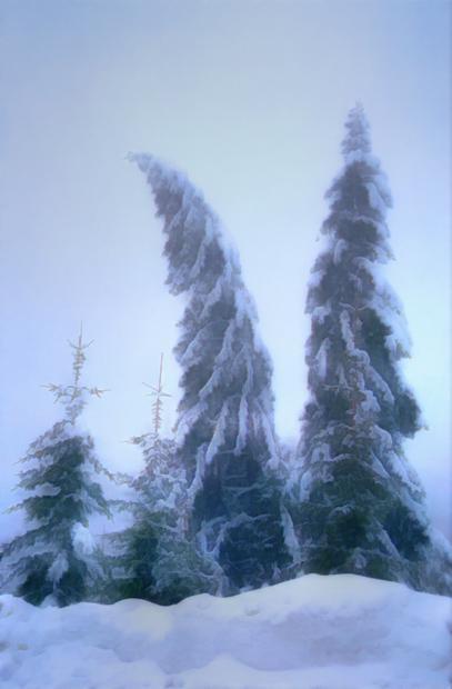 brazi iarna zapada