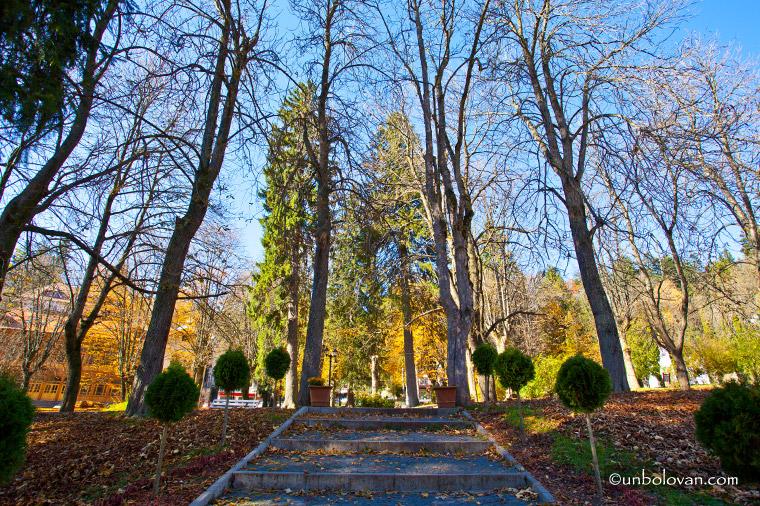 sinaia toamna parc frunze culori