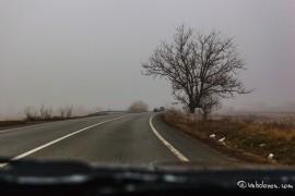 ceata08