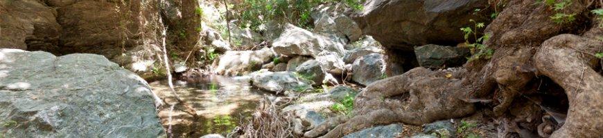 richtis-gorge-1177ew