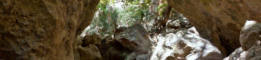 trekking-2432ewb