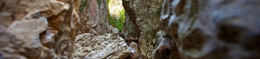 trekking-2655ewb