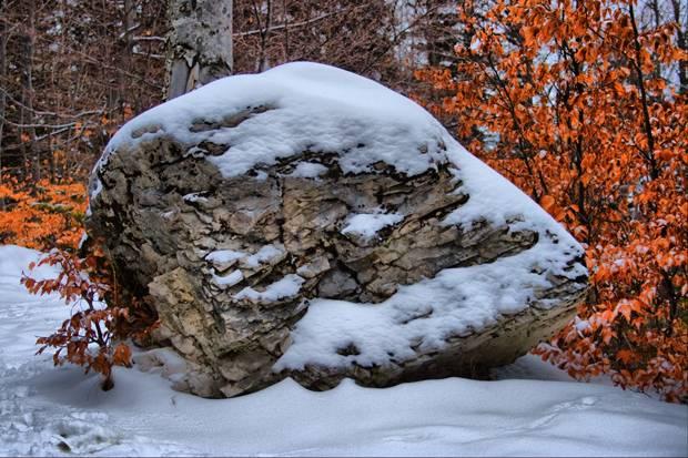 sinaia ninsoare zapada bolovani