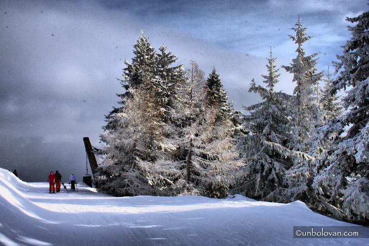 iarna sinaia schi